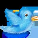twitter bird cute fluffy
