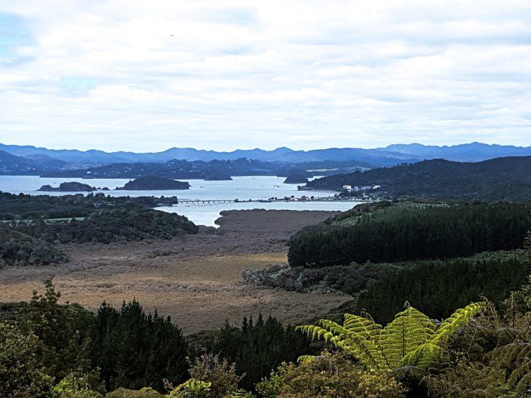 Views to paihia Te Araroa trail
