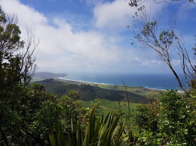 Te Araroa Trail Bream Head Ocean Beach