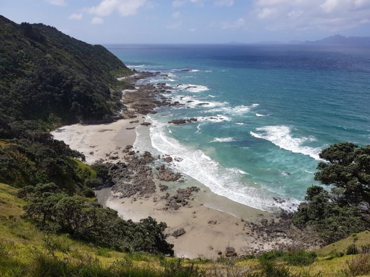 Te Araroa Trail Mangawhai Heads Coastal Walkway