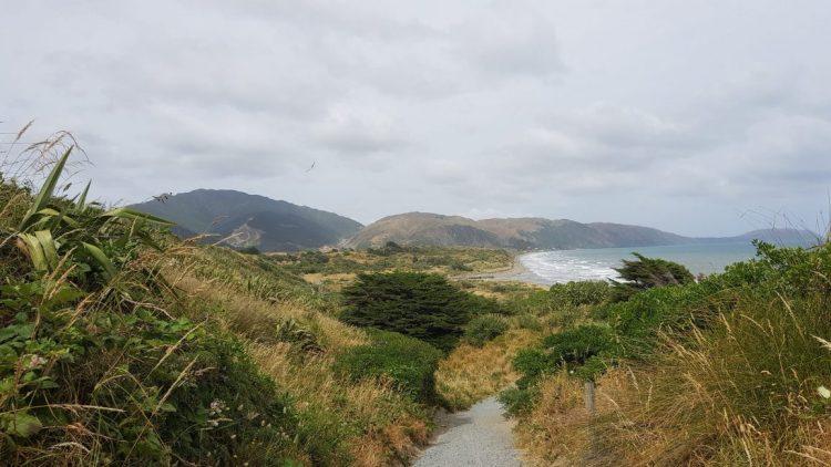 Te Araroa Trail Queen Elizabeth Park Kapiti Coast