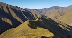 Te Araroa Trail From Roses Saddle