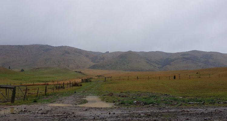 Te Araroa Trail Day 111 - Birchwood to Merriview hut
