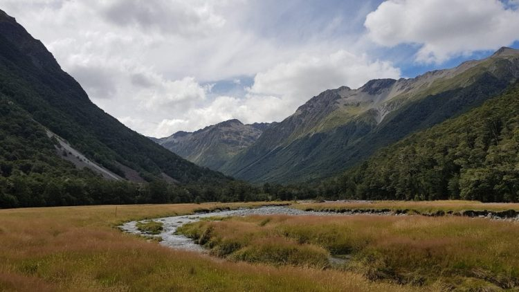 Te Araroa Trail Day 124 - On the valley floor after Waiau Pass