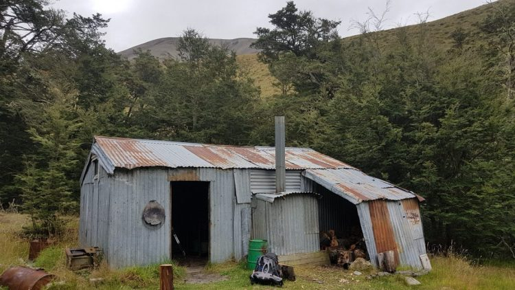 Te Araroa Trail Day 138 - Felt hut