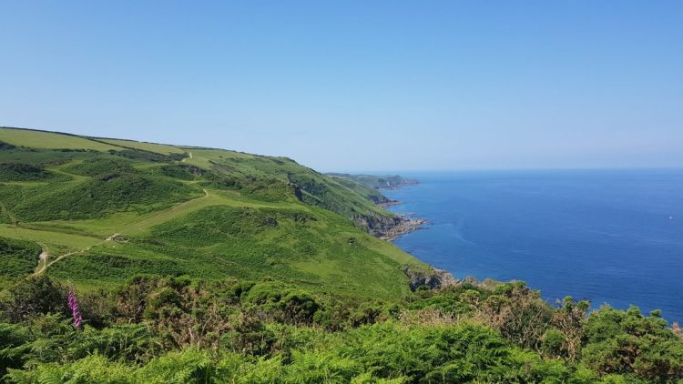 The Torrs to Bull Point