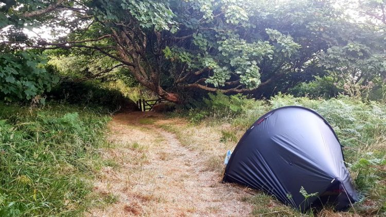 Wild camp on the trail