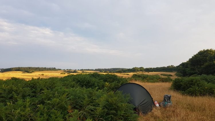 My wild camp just before Sidmouth