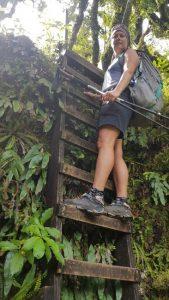 Tinytramper on a ladder around the mountain Taranaki