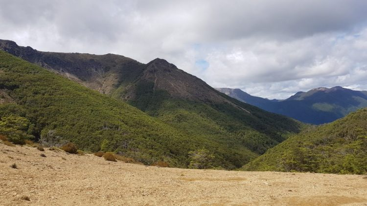 The Richmond ranges from Starveall hut