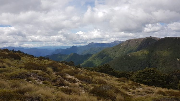 The Richmond ranges from Slaty hut