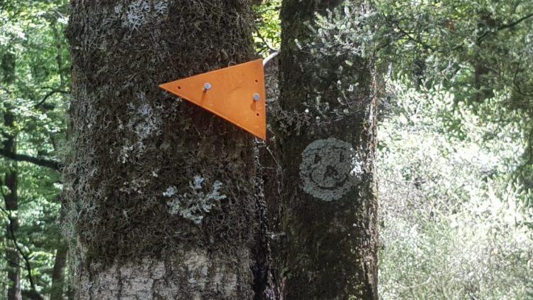 Doc trail Marker