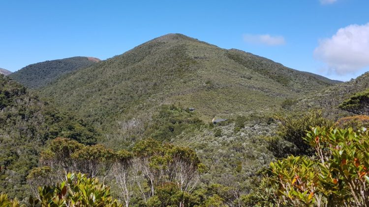 Towards Perry Saddle hut on the Heaphy Track