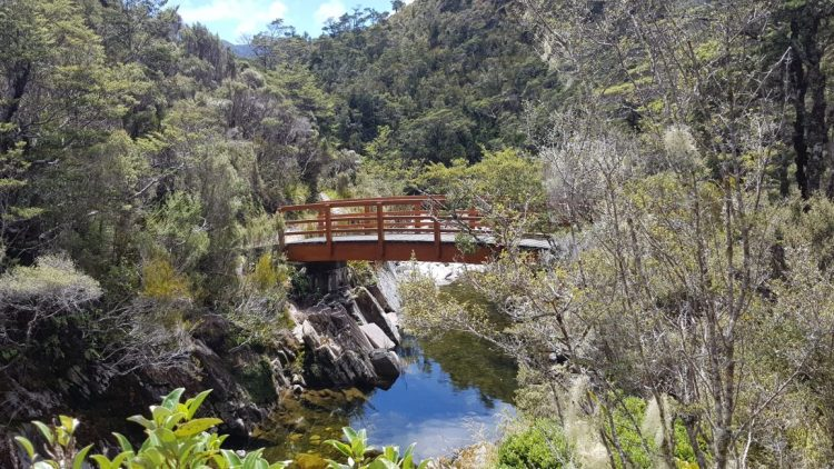 Towards Gouland Downs hut - Heaphy Track