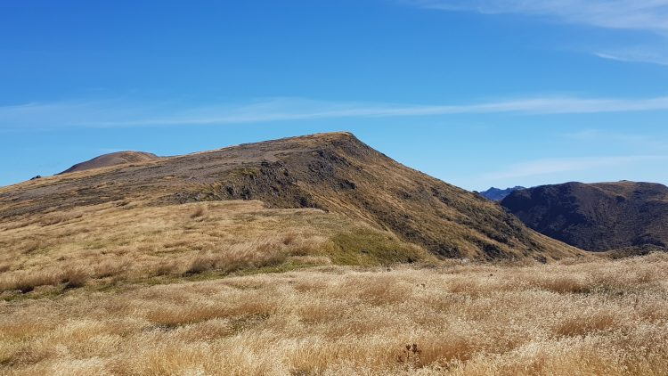 Grasslands on the tops towards Mount Peel Kahurangi National Park
