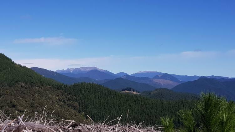 Views across the Richmond ranges from Mount Malita