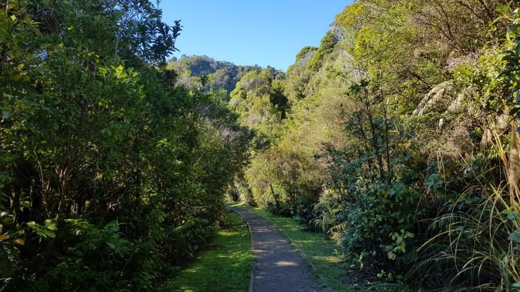 Starting the Charming Creek Walkway