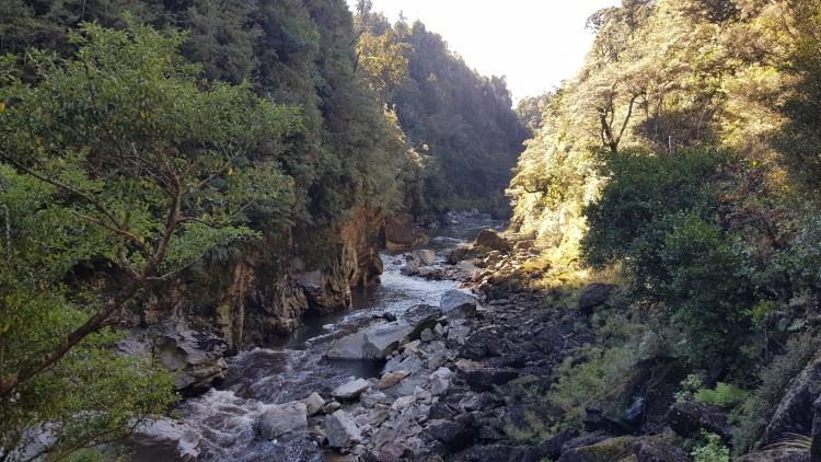 The Ngakawau River gorge