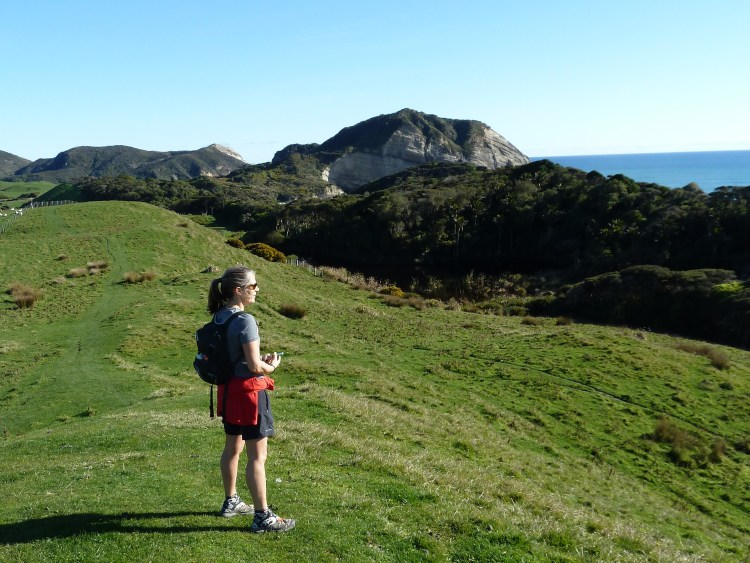 Enjoying the view on the Puponga Farm Track towards Wharariki Beach
