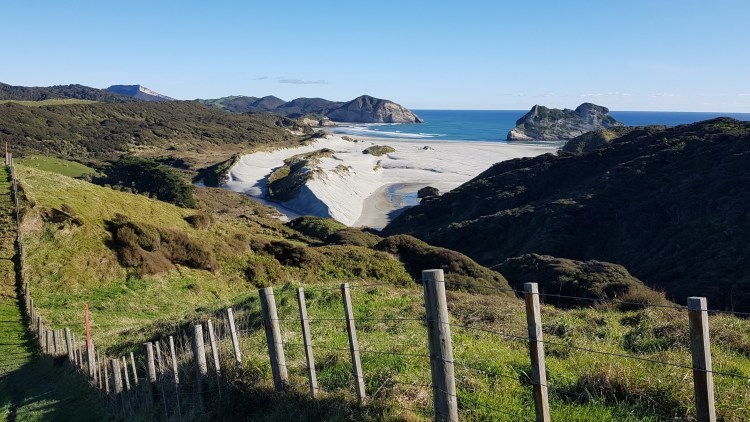 Wharariki Beach from the Puponga Hilltop Track
