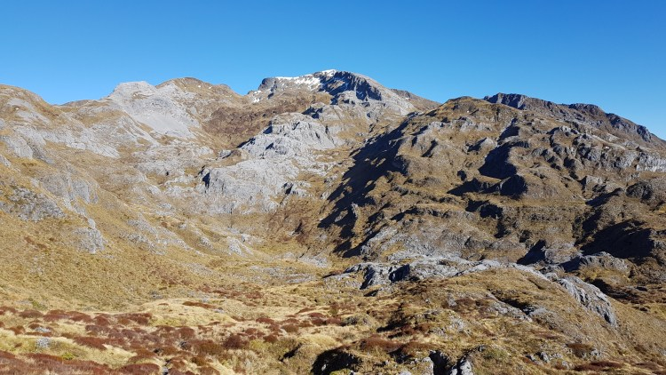 Mount Arthur from Horseshoe Basin Tinytramper
