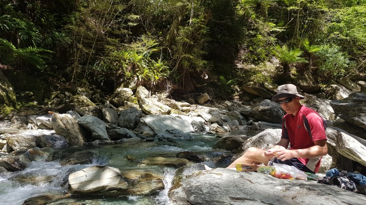 A perfect spot for lunch on a tributary of Timms Creek