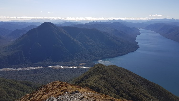 The D'Urville river from Mt Misery