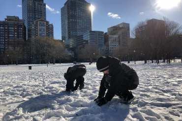 Boston Common snowman