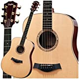 Best Offer Taylor Guitars DN8 Dreadnought Acoustic Guitar