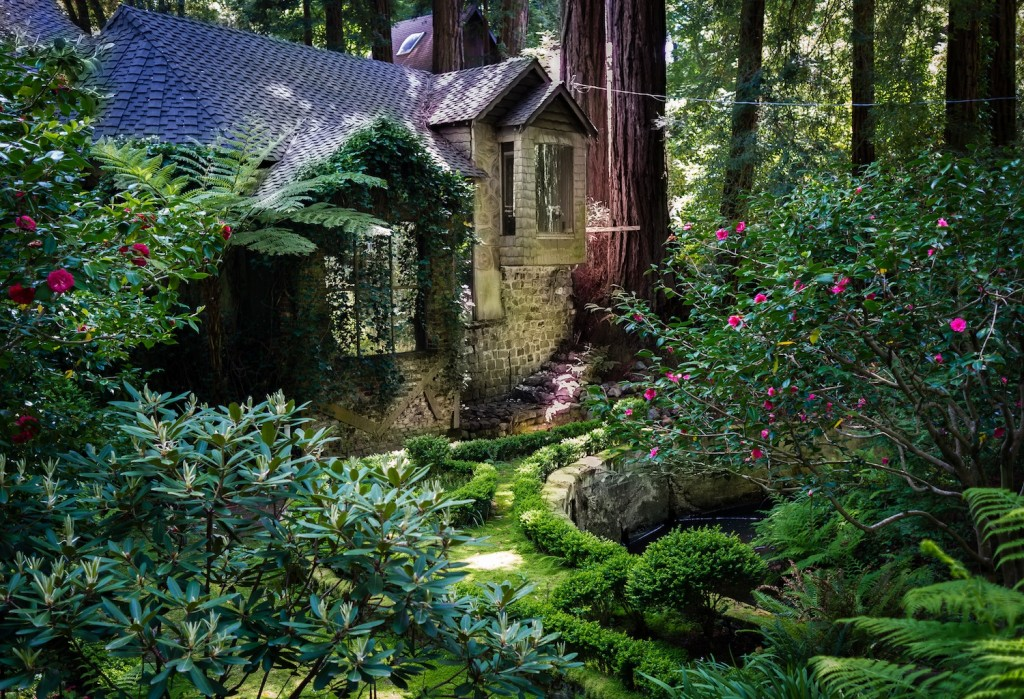 House amongst redwood trees, by Frank Schulenberg