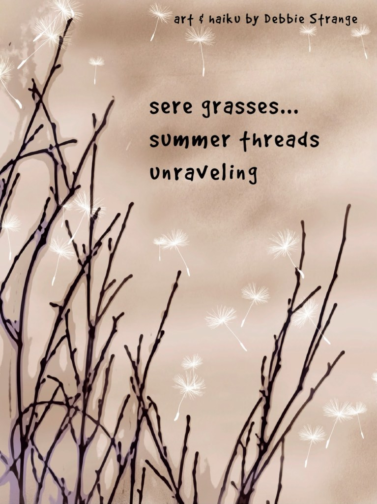 sere grasses … summer threads unraveling