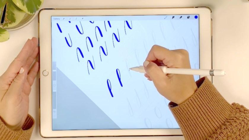 Intro to Digital Calligraphy in Procreate Skillshare