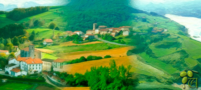 Comprar aceite de oliva en Euskadi