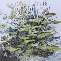 Artist: Zahari Hamidon Title: Water Lilies Year: 2018 Medium: Watercolor on paper Price: Size: 20 X 16 in