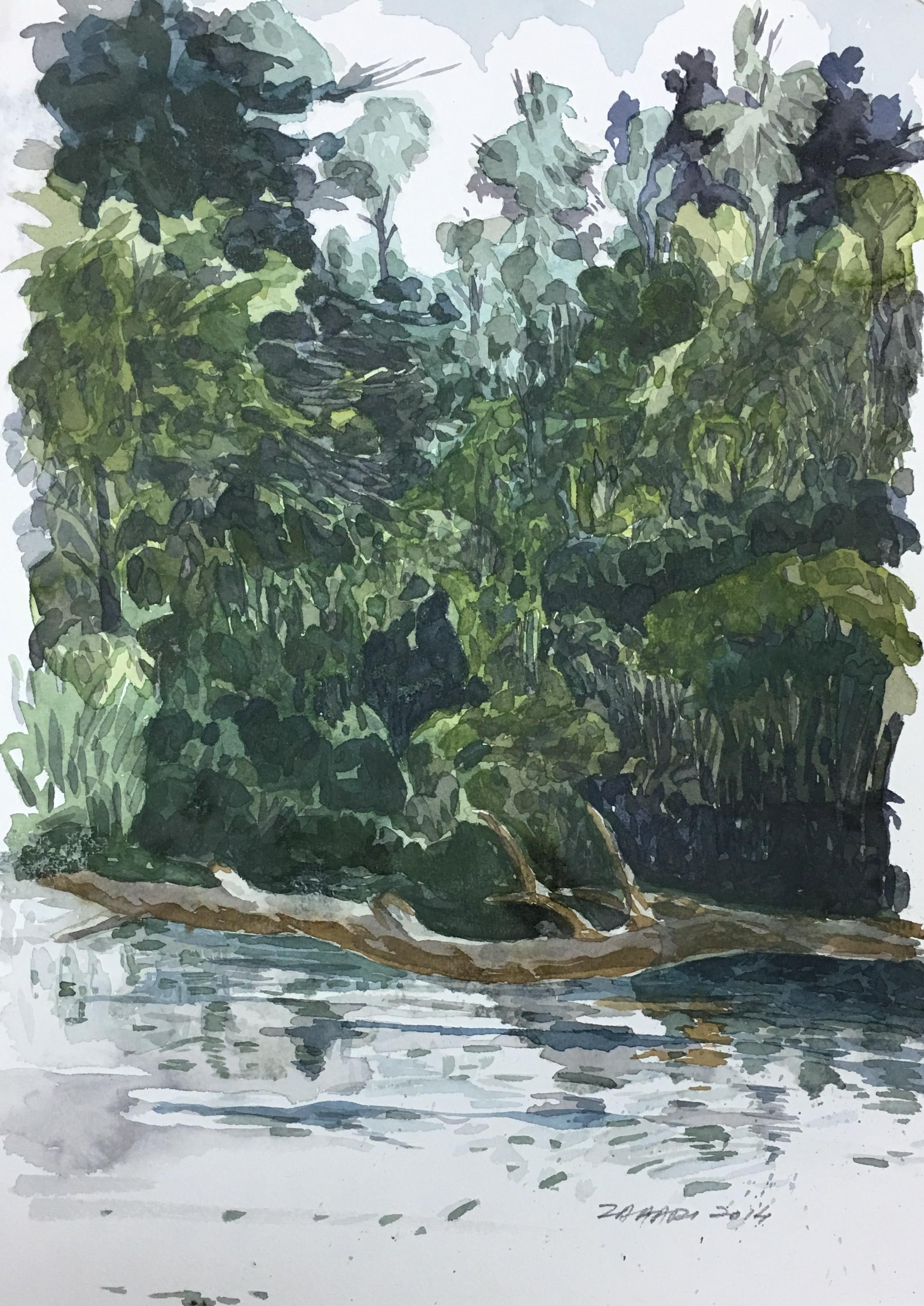 My Art: Watercolor