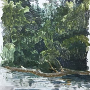 Artist: Zahari Hamidon Title: Ulu Belalong #2 Year: 2014 Medium: Watercolor on paper Price: Size: