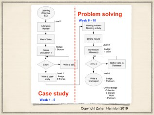 Figure 4: Activity based in Procedural Task Analysis flowchart