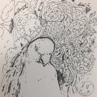 Artist: Zahari Hamidon Title: Burung Bayan II Medium: Pen and Ink on paper Copyright © Zahari Hamidon 2019