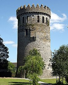 Nenagh Castle, Co Tipperary