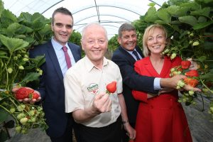 Irish Fresh Fruit Industry Valued At €45 Million