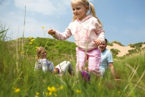 Haven Holidays Summer Savings Offer