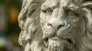ライオンズ