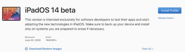 Developer web page
