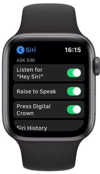 Apple Watch Raise To Speak