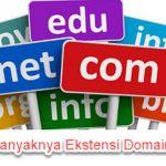 Domain Populer Selain