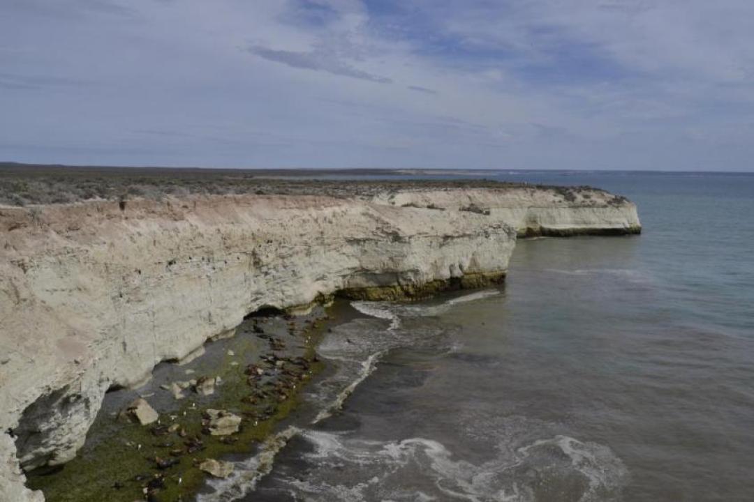 La loberia di Punta Lomo a Puerto Madryn