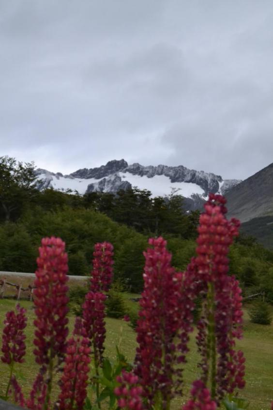 Ghiacciaio Martial e Lupinos ad Ushuaia