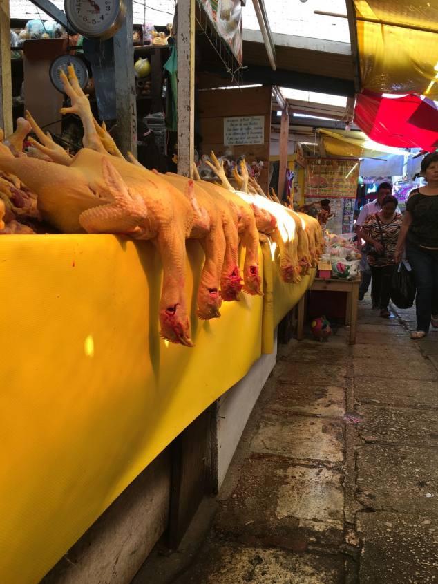 mercato-di-san-juan-chamula-chiapas-messico-polli