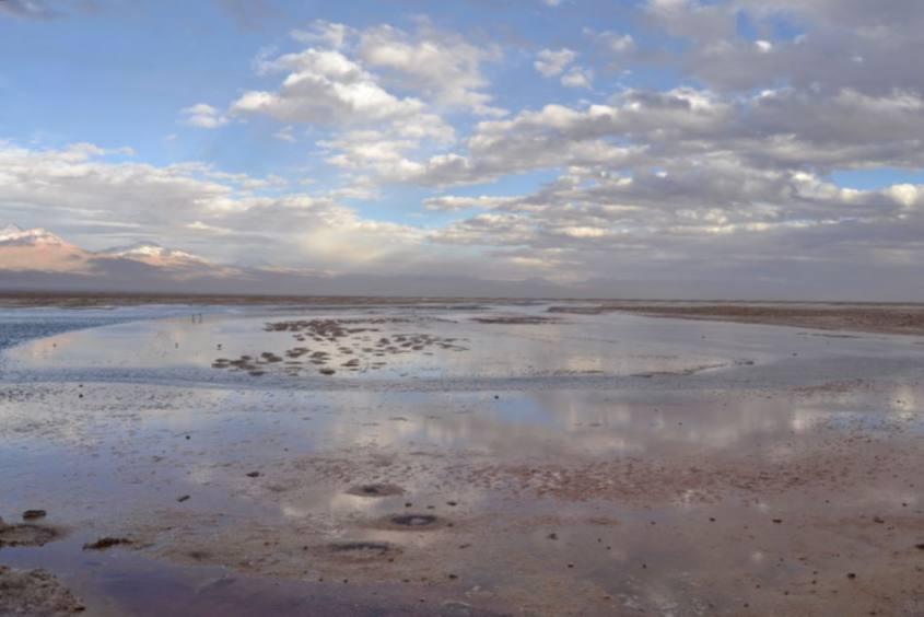 Lagune colorate di rosa all'interno del deserto di Atacama in Cile