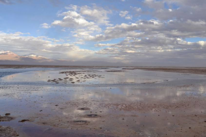 Lagune colorate di rosa all'interno del deserto di Atacama in Cile